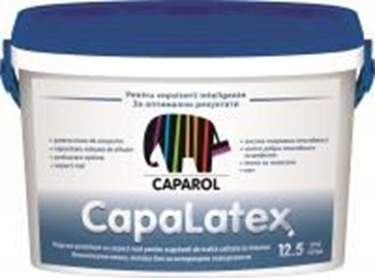 Imagine CAPALATEX B1 10L
