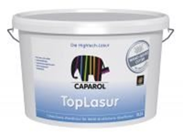 Imagine CAPAROL- CP TOPLASUR NQG 10 LT
